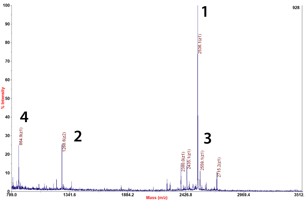 EpiCyperh peptide synthesis 12-0001